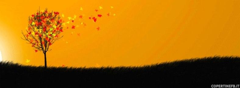 immagine-di-copertina-foglie-dautunno