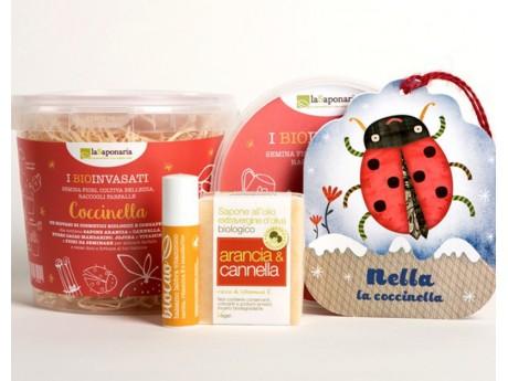 la-saponaria-biovaso-coccinella