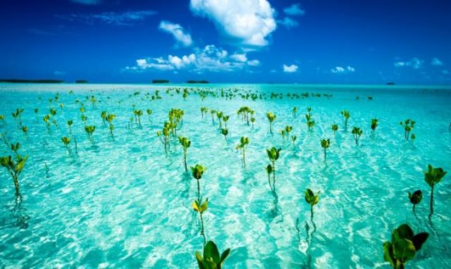 tuvalu_20130826_1350859058-720x430